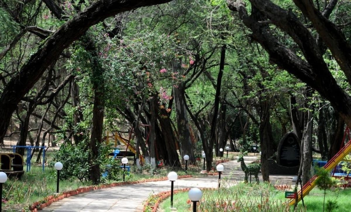 Chandigarh-parks-open-for-early-morning-strollers