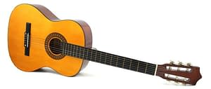 Acoustic Guitar In Chandigarh